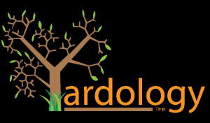 This image has an empty alt attribute; its file name is yardology-logo.jpg